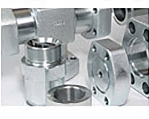 GS-Hydro Flanges & Couplings